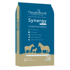 Thunderbrook synergy  formally base mix